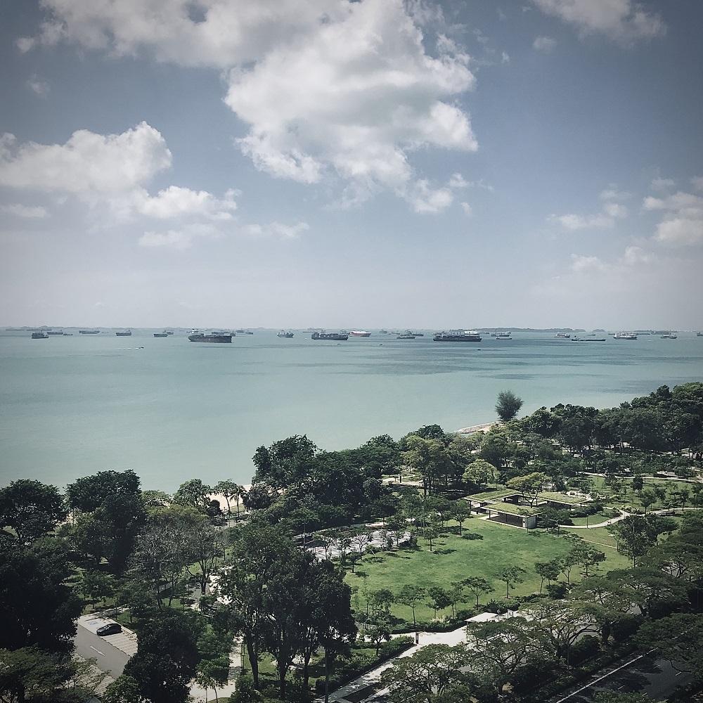 Landschaftsbild von Singapur mit Blick auf Meer und Schiffe am Horizont bei blauem Himmel